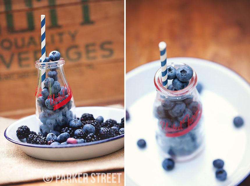 blueberries by parker street imagery