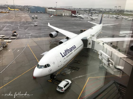 View from the Lufthansa Business lounge, BOS Terminal E